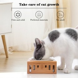 Cat Bowls with Stand Eco Friendly Pet Bowls for Feeding Food and Water